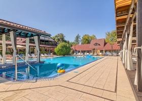 Relaxeaza-te pe durata sezonului cald la piscina noastra, inconjurat de palmieri si lux